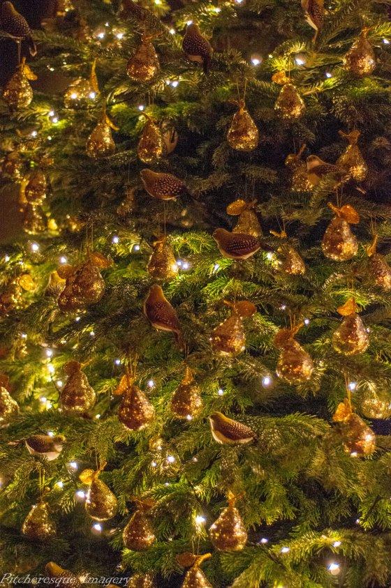Holkham Christmas 2014-58