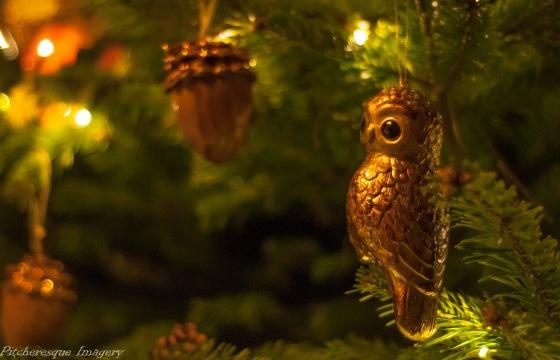 Holkham Christmas 2014-63